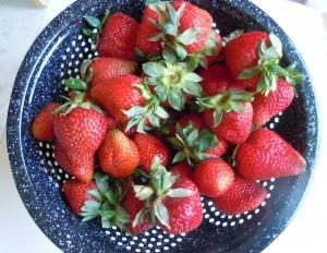berries02