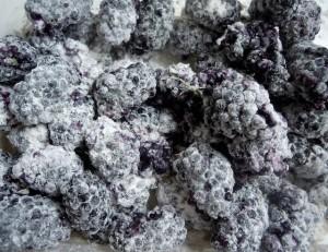 flourberry01